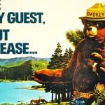 9 августа — День защиты леса от пожара в США