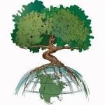 25 апреля — Праздник древонасаждения (День Арбориста)