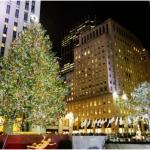 В США зажгли главную рождественскую елку